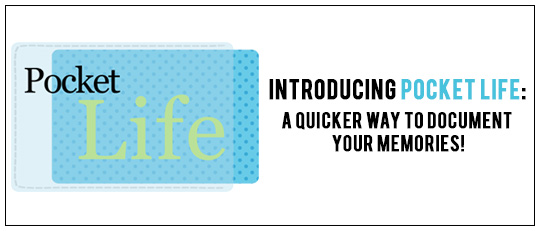 Introduction to Pocket Life Journaling Cards