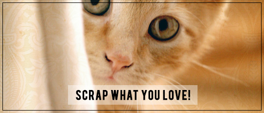 Scrap What You Love