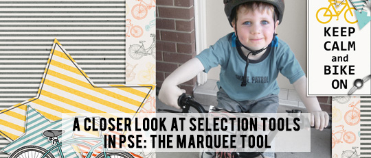 Selection Tools in Photoshop Elements - Marquee Tool - tutorial intro banner