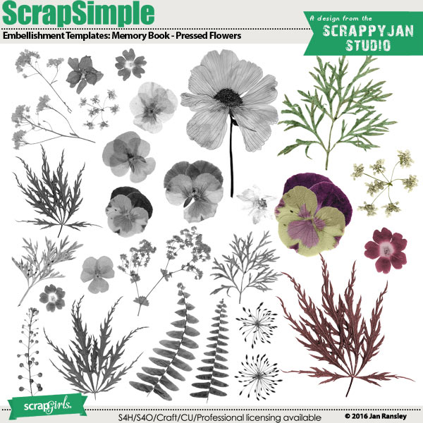 ScrapSimple Embellishment Templates: Memory Book Pressed Flowers