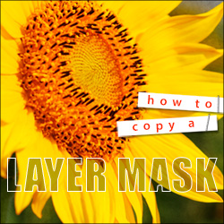 Copy a Layer Mask free video Tutorial