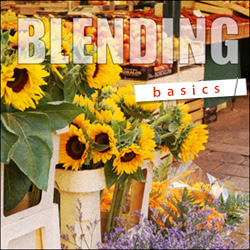 Basics of Blending free video Tutorial