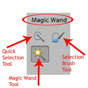 The three selection tools embedded in the magic wand tool