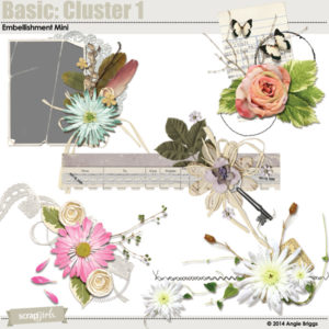 Basic Clusters Embellishments