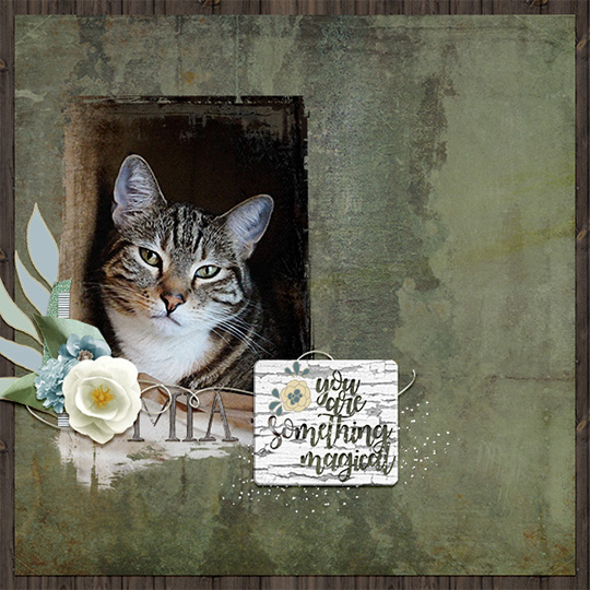 Finished digital Scrapbooking layout showing photo with masked applied.